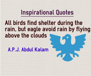 inspirational quotes birds find shelter during rain eagle fly over ...
