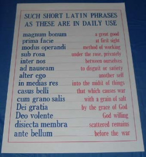LATIN PHRASES IN COMMON USE POSTER