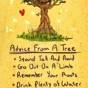 Be Like A Tree!!