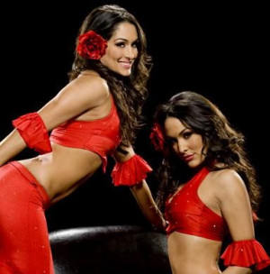 WWE Divas Bella Twins Pictures