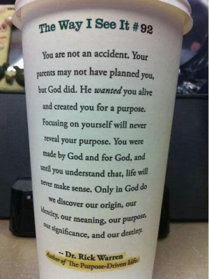 You are not an accident. Rick warren