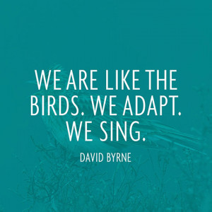 quotes adapt sing david byrne 480x480 jpg