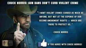 Chuck Norris quote