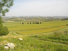Lovely valley, the Elah Valley