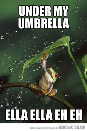 funny frog umbrella leaf rain