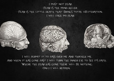 quotes brain Wallpaper HD