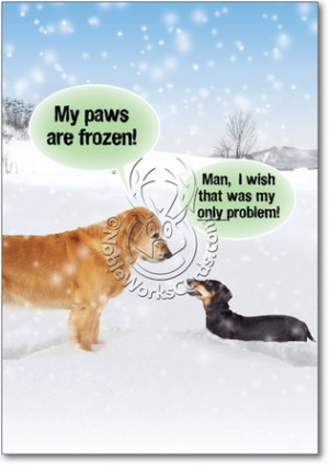My Paws Are Frozen Unique Funny Christmas Card Nobleworks