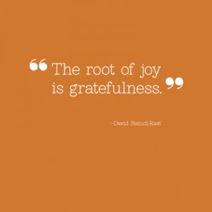 The root of joy is gratefulness.
