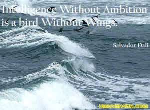 Intelligence Without Ambition is a Bird Without Wings. (Salvador Dali)