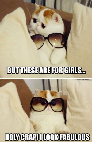 But these are for girls... Holy crap! I look fabulous. Cat in ...