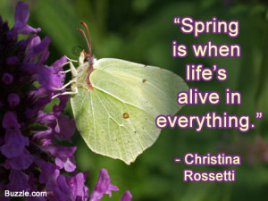 Spring is nature's way of saying, Let's party!