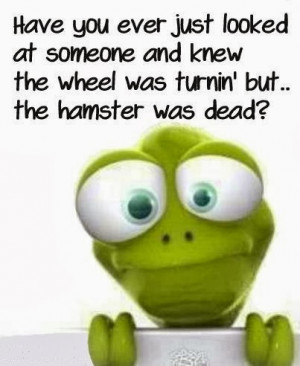 Have you ever just looked at someone and knew the wheel was turning ...