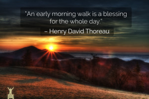 "An early morning walk is a blessing for the whole day."" – Henry ..."