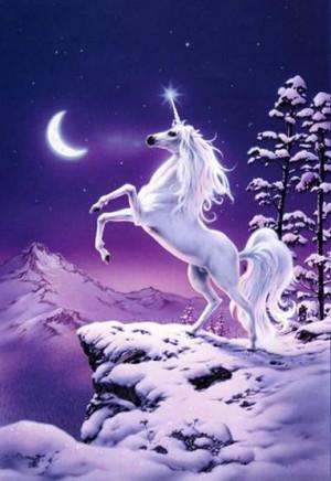 unicorn tags unicorn fantasy snow