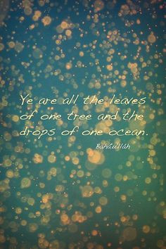 Ye are all the leaves of one tree and the drops of one ocean