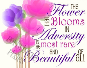 Beautiful Flower Pictures With Quotes Beautiful flower pictures with