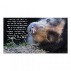 Henry David Thoreau ANIMAL RIGHTS Quote by all_creatures