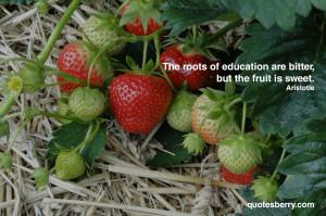Quotes Berry : Tumblr Quotes Blog