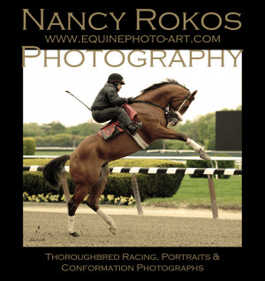 THOROUGHBRED HORSE RACING PHOTOS-2013