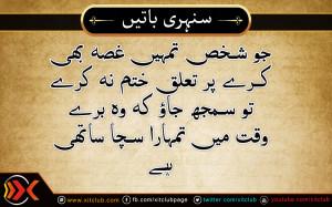 Urdu Quotes ] Jo Shakhs Tumhe Ghusa Kare