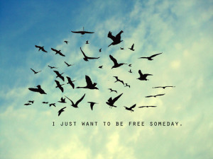 ... life, no limit, quot, quote, quotes, relatable, sky, someday, thoughts