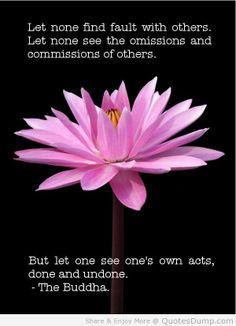 quotes more life quotes buddha wisdom buddha quotes buddhism ...