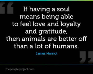 ... , then animals are better off than a lot of humans. - James Herriot