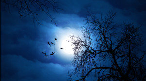 the moon is always coming to cloak the night sky with gleaming light.