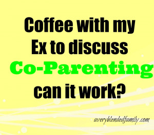 stories of where ex partners have successfullynegotiated the parenting ...
