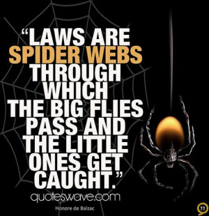 Laws are spider webs through which the big flies pass and the little ...