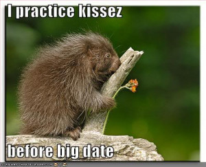 Funny Animals With Funny Sayings ....