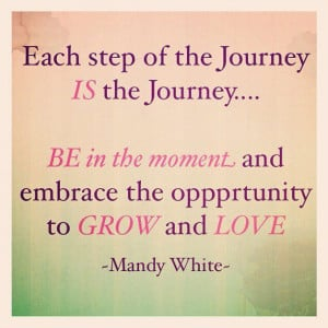 Each Step Of The Journey