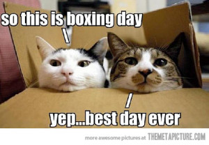 boxing day » Got Smile? - Funny Pictures, Videos, Games, News ...