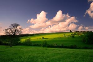 20 Beautiful Landscape Photos