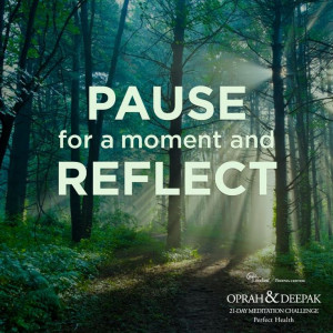 Push the pause tab every day and reflect on what is happening in your ...