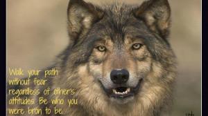 Wolf wisdom black wild animal pack the lone HD Wallpaper
