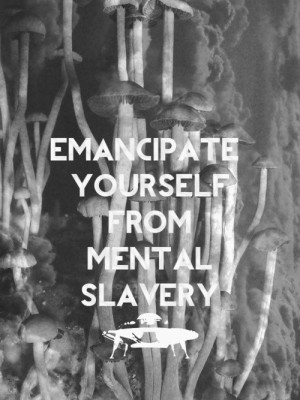 emancipate yourself from mental slavery