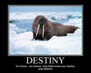 Destiny Quote To Live By On A Motivational Poster