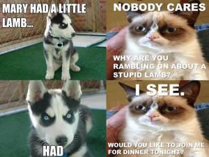 ... Online, Appearances Grumpy, Lambs, Favorite Quotes, Grumpy Catie