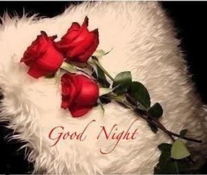 buenas noches mi amor.....