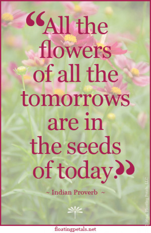Quotes About Flowers And Happiness Monday's flower quote