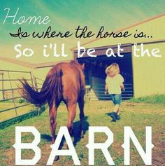Home is where the horse is...so I'll be at the BARN