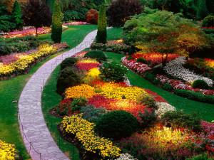 Download flower garden wallpaper hd 2 747079 - Fullsize Wallpaper