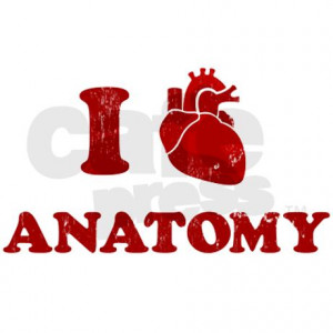 love_anatomy_rectangle_sticker.jpg?color=White&height=460&width=460 ...