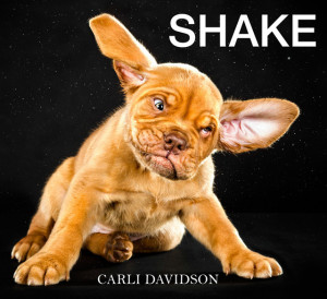 Shake, A Funny Book of Dogs Photographed While Shaking Off Water