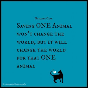 Save an animal's life with your child present.. Check! Beautiful that ...