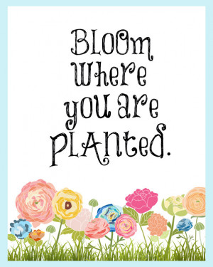 Bloom Where You Are Planted Quote