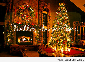 ... , funny quotes, funny sayings, funny 2014, funny Christmas 2013