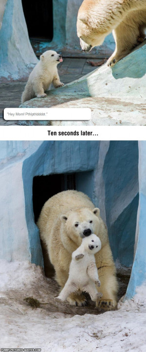 Disrespectful Baby Polar Bear