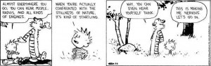 Your Saturday Smile: Calvin and Hobbes Edition